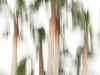 Galerie: Landscape / Andalusien