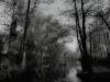 Galerie: Landscape / Impressionen