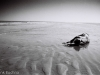 Galerie: Experimental / Meeresrausch