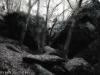Galerie: Landscape / Mystic