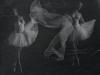 Galerie: Silk / Phototgramme 2012