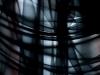 Galerie: Silk / Seidenbilder